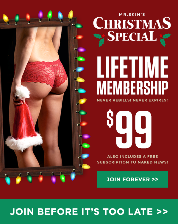 Holiday Lifetime Offers