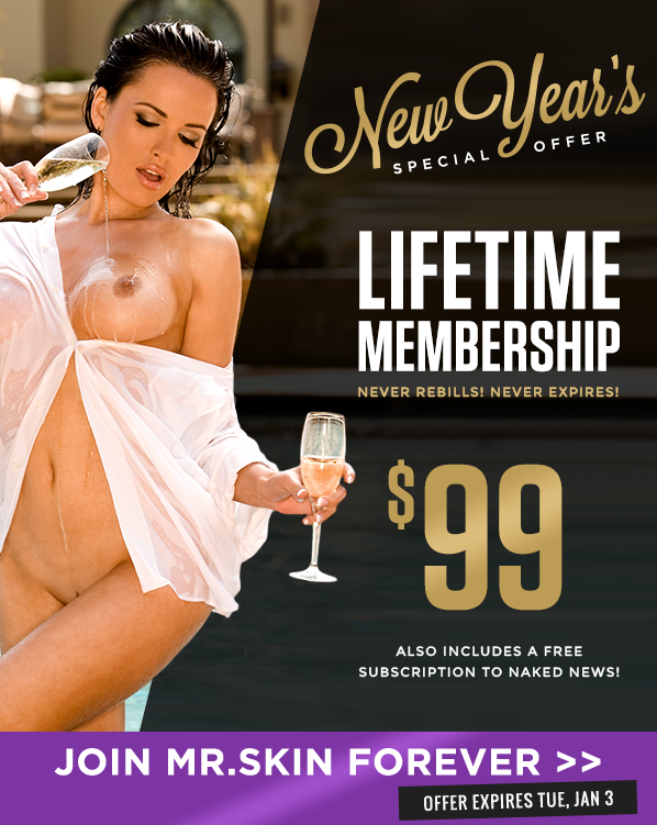Mr Skin New Years Eve Lifetime Offer Last Chance!